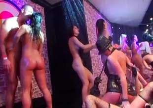Cum hungry brunette receives a dong to suck at a raunchy club orgy