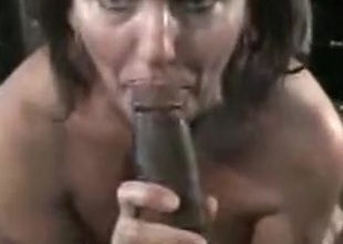 1281 straight xxx porn tubes