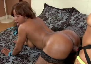 Big ass lesbians fucking hardcore with a thong on dildo