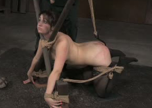 Brunette curvy lady Piper Rage fixed in doggy position position