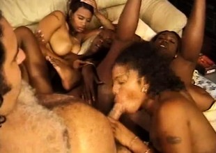 Enticing lecher Ron Jeremy uses yummy black cunt exclusively