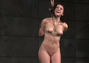 Chubby white whore Mandy Muse bound and suspended on her toes